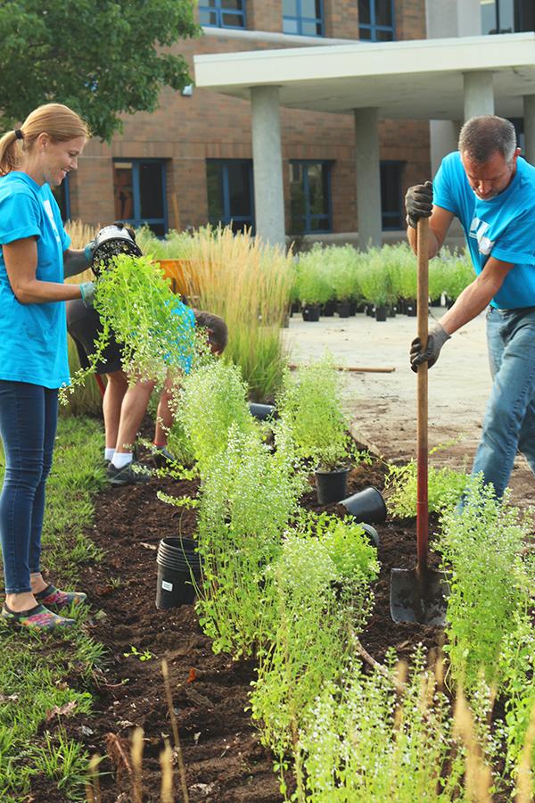 Two volunteer workers gardening
