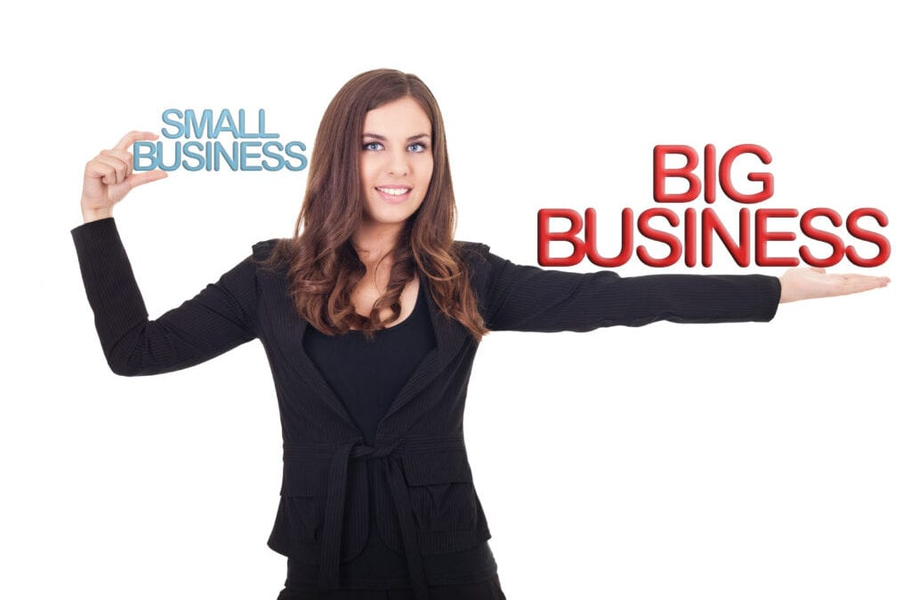 Are you a corporation, a mid-size or a small business?